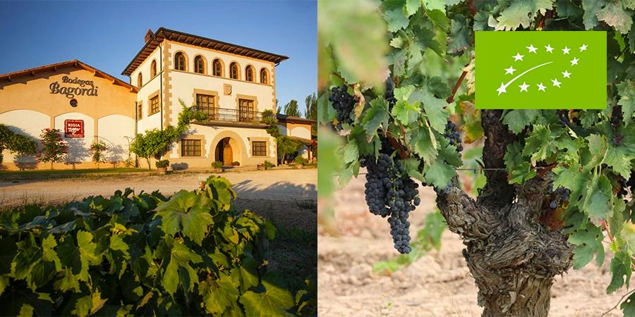 Bagordi Rioja